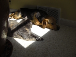 Stella and Nikki Sunning